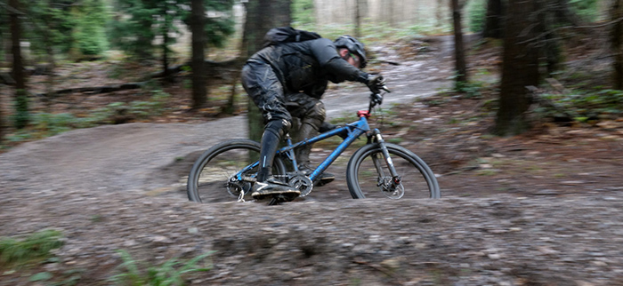 Singletrack trails at Bedgebury