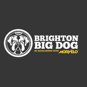 Brighton Big Dog